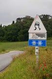 Дорога знака скользкая Стоковые Фото