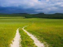 Дорога на поле Стоковое Изображение