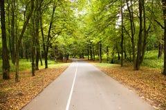 дорога парка к Стоковое Изображение RF