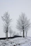 дорога снежная Стоковое Фото