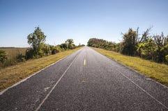 Дорога через национальный парк болотистых низменностей Стоковое Изображение RF