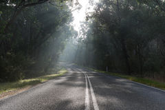 дорога 2 стран туманнейшая Стоковое фото RF