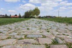 Дорога Cobbelstone Стоковая Фотография RF