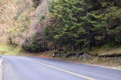 Дорога, Jiuzhaigou Стоковое Фото