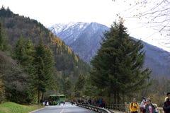Дорога, Jiuzhaigou Стоковые Изображения