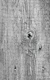 Доска с узлом Стоковая Фотография RF