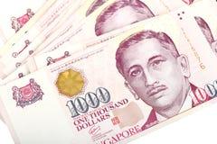 Доллары Сингапура Стоковые Изображения