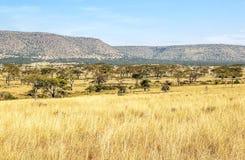 Долина в Танзании Стоковые Изображения