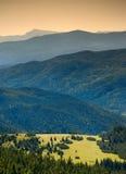 Долина прикарпатской горы Стоковое фото RF