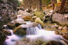 Долина Restonica, Корсика Стоковое Фото