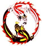 драконы Стоковое Изображение