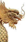 дракон Стоковые Изображения