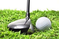 древесина гольфа Стоковое Изображение RF
