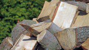 древесина кучи Стоковое Фото