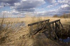 древесина моста Стоковые Фото