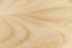древесина текстуры золы Стоковое фото RF