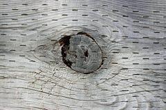 древесина узла отверстия Стоковые Фотографии RF