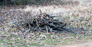 Древесина штабелированная в куче для лагерного костера Стоковые Фото