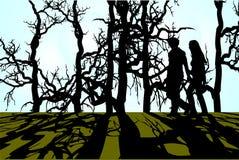древесины прогулки Стоковое Изображение