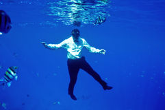 друг рыб Стоковое фото RF