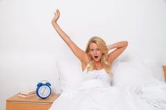 духи утра разрешения париа хорошие вверх просыпают Стоковая Фотография