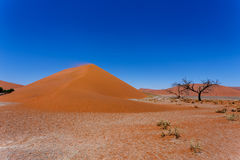 Дюна 45 в sossusvlei NamibiaDune 45 в sossusvlei Намибии, взгляде Стоковые Изображения