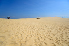 Дюна Pilat, Франции Стоковое Изображение