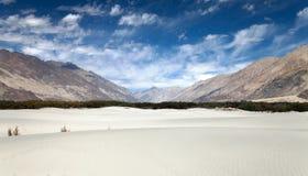 Дюны в долине Nubra Стоковое Изображение