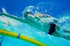 水下池的游泳者 免版税图库摄影