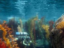 水下潜水员的水肺 免版税库存图片