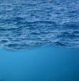 水下的小波 库存照片