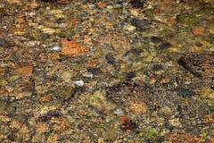水下的岩石 库存图片
