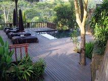 巴厘岛密林室外池 库存照片