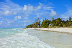 巴哈马海滩 免版税图库摄影