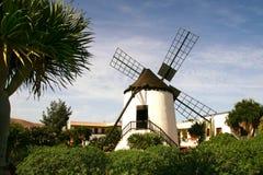 费埃特文图拉岛风车 库存照片