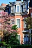维多利亚时代建筑和春天颜色 免版税库存照片