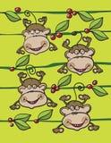 猴子果子和叶子 免版税库存照片