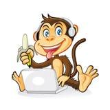 猴子膝上型计算机 库存图片