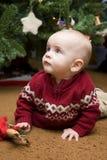 婴孩下圣诞树 免版税库存照片