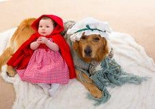婴孩有狼狗的小红骑兜帽作为祖母 库存图片