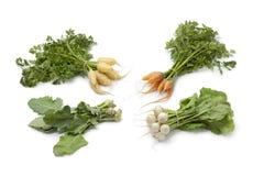 婴孩种类蔬菜 库存图片