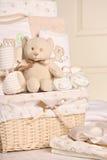 婴孩篮子礼品 库存照片