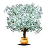 货币结构树 库存照片
