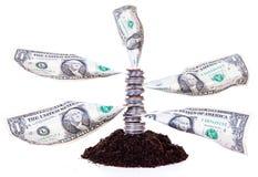 货币结构树 图库摄影
