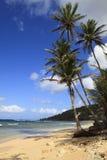 巴布达使美丽靠岸 免版税图库摄影