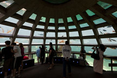 水族馆西雅图 库存照片