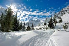晴朗的冬天 免版税库存照片