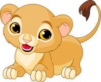 渴望崽的狮子 免版税库存图片