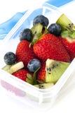 水果沙拉午餐盒 免版税库存图片