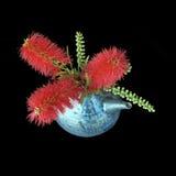 洗瓶刷花束明亮的红色 免版税库存照片